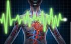 Επιστήμονες δημιούργησαν τεχνητά αιμοφόρα αγγεία