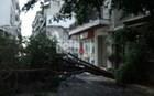 Φωτογραφίες: Έπεσαν δέντρα και έγιναν σοβαρές ζημιές στην Πάτρα