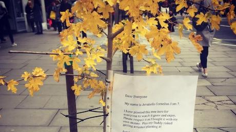 Πατέρας και κόρη φύτεψαν δέντρο στη μέση του δρόμου με ένα υπέροχο μήνυμα (pics)