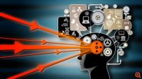 Τι συμβαίνει στον εγκέφαλό μας όταν μαθαίνουμε κάτι;