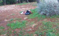 Άστεγος στην Εκάλη