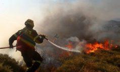 Παρούσα η πολιτική προστασία της Κηφισιάς σε μεγάλη φωτιά στο Μαραθώνα.9.45 9/11