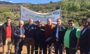 Τα συγχαρητήρια του Νίκου Χιωτάκη για τη σημερινή δράση αναδάσωσης