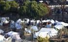 Απεργία πείνας στη Μόρια από Σύρους πρόσφυγες κουρδικής καταγωγής