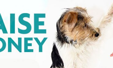 Στηρίζω έμπρακτα την επιτροπή ζωοφιλίας του Δήμου Κηφισιάς