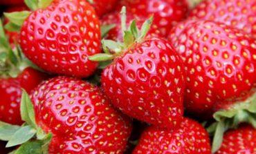 Το POLIS 24 σας παρουσιάζει 3 ανοιξιάτικες συνταγές με Φράουλες