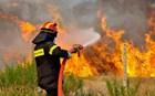Πυρκαγιά στην Πούντα Αιγιαλείας