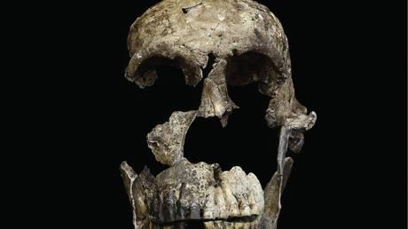 Ο Homo Sapiens δεν ζούσε… μόνος στην Αφρική