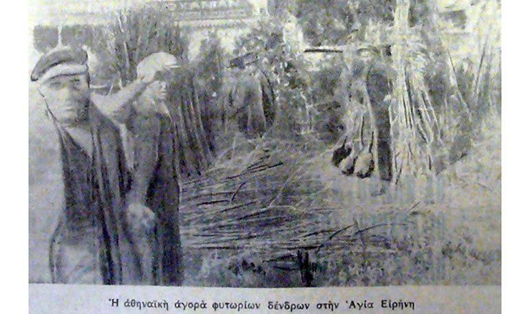Αγία Ειρήνη: Το παζάρι του πράσινου. Από την παλιά Αθήνα.
