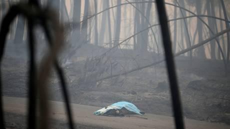 Σοκαριστικές εικόνες στην Πορτογαλία – Καμμένα πτώματα στο δρόμο