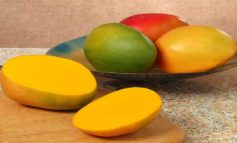Πέντε τροπικά φρούτα για τη διατροφή μας
