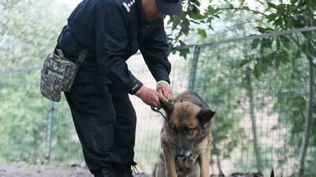 Ένα σπιτάκι αποκλειστικά για συνταξιοδοτημένους σκύλους αστυνομικούς!