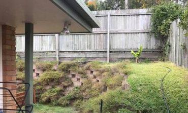 Βρήκαν ένα πύθωνα στην αυλή του σπιτιού τους στο Κουίνσλαντ – Μπορείτε να τον εντοπίσετε;