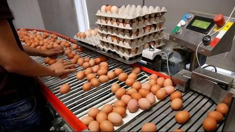 Διατροφικό σκάνδαλο: Η Ουγγαρία αποσύρει από την αγορά μολυσμένα αυγά