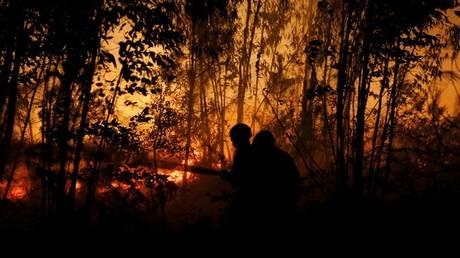 Ισπανία: Οι περισσότερες δασικές πυρκαγιές της τελευταίας πενταετίας καταγράφηκαν φέτος