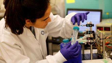 Νέα μέθοδος δημιουργίας σπερματοζωαρίων από βλαστοκύτταρα