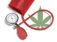 Τριπλάσιος ο κίνδυνος θανάτου από υπέρταση για τους χρήστες μαριχουάνας