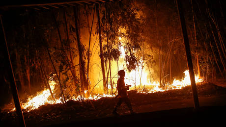 Πορτογαλία: Ανεβαίνει ο αριθμός των θυμάτων από τις πυρκαγιές