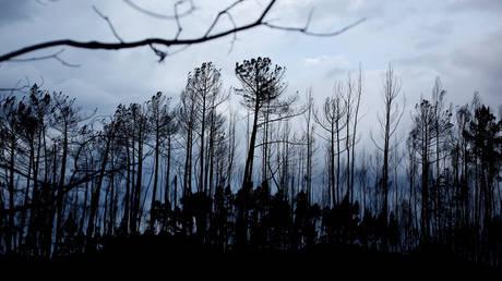 Πορτογαλία: Αυξήθηκε ο αριθμός των θυμάτων από τις πυρκαγιές (pics)