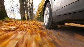 O δεκάλογος της ασφαλούς οδήγησης το φθινόπωρο (vid)