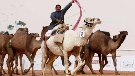 Καμήλες αποκλείστηκαν από διαγωνισμό ομορφιάς λόγω… μπότοξ (pics&vid)