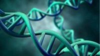 To DNA μεσαιωνικής μούμιας παιδιού αποκάλυψε ότι είχε ηπατίτιδα Β