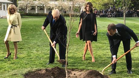 Εξαφανίστηκε το δέντρο που φύτεψαν στο Λευκό Οίκο οι Τραμπ-Μακρόν (pics)