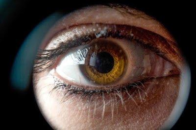 Η λουτεΐνη και η ζεαξανθίνη και η σημασία τους για τα μάτια μας και στην εκφύλιση της ωχράς κηλίδας. Σε ποιες τροφές βρίσκονται