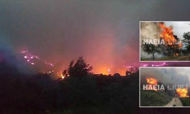 Μεγάλη πυρκαγιά στην Ηλεία - Εκκενώθηκαν σπίτια