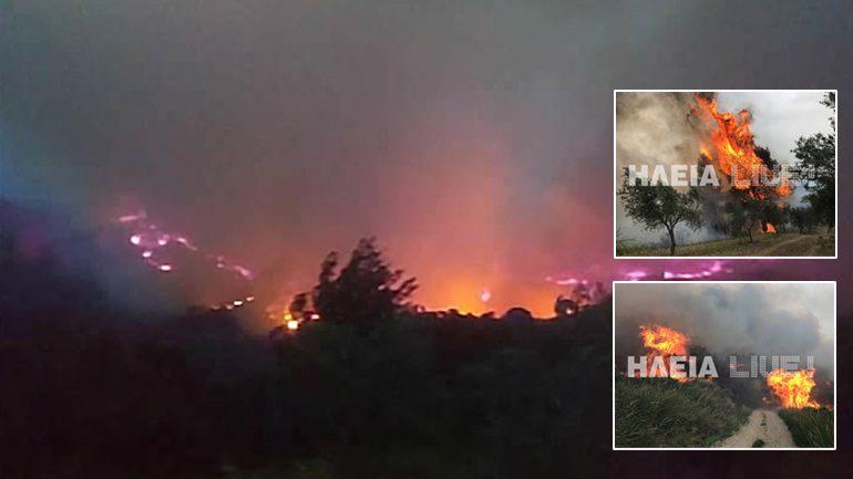 Μεγάλη πυρκαγιά στην Ηλεία – Εκκενώθηκαν σπίτια