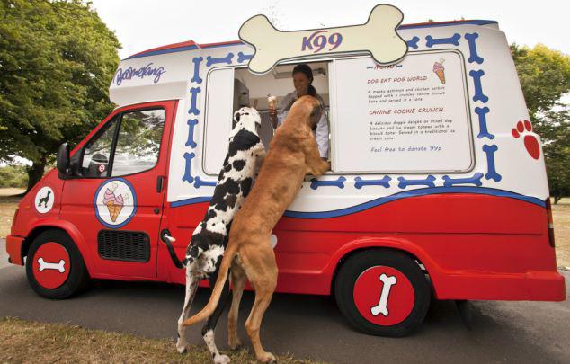 Κι ο σκύλος θέλει το…παγωτό του!