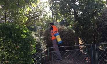 Συνεχίζονται εντατικά οι επεμβάσεις για τα κουνούπια στο Δήμο Κηφισιάς