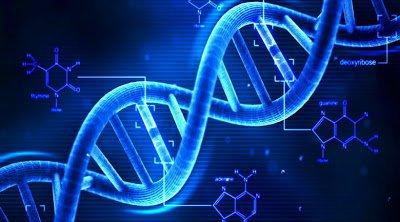Ανακάλυψαν σχεδόν 1.000 νέα γονίδια που σχετίζονται με τη νοημοσύνη