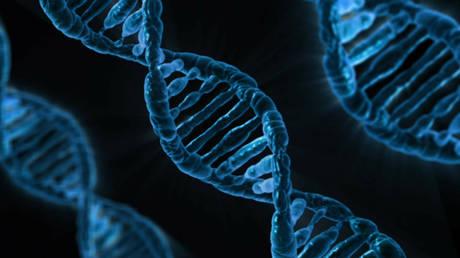Πόσα γονίδια έχει ο άνθρωπος; Το ερώτημα που διχάζει τους επιστήμονες