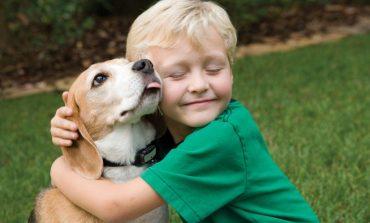 Πώς να συμφιλιώσω τον σκύλο και το παιδί μου