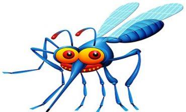 Επεμβάσεις για τα κουνούπια στο Δήμο Κηφισιάς