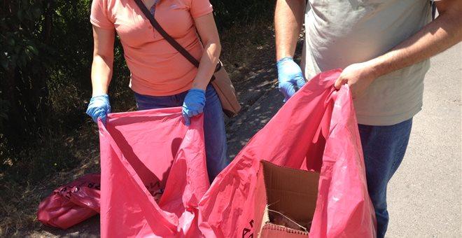 Κυριακή 15 Ιουλίου. Δράση καθαρισμού στο Δάσος Φασίδερη