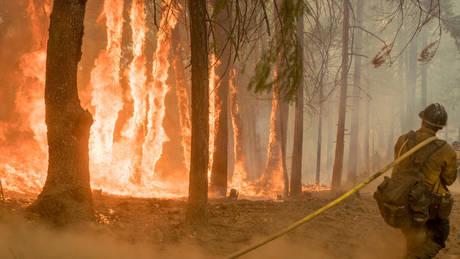 Πύρινος εφιάλτης στις ΗΠΑ: Μαίνονται πάνω από 100 φωτιές
