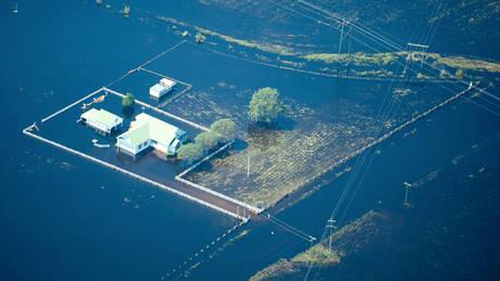 Τυφώνας Φλόρενς: Εκατομμύρια νεκρά κοτόπουλα και γουρούνια στις πλημμυρισμένες περιοχές