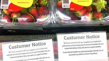 Νέα Ζηλανδία: Επέστρεψε ο εφιάλτης της… βελόνας στις φράουλες