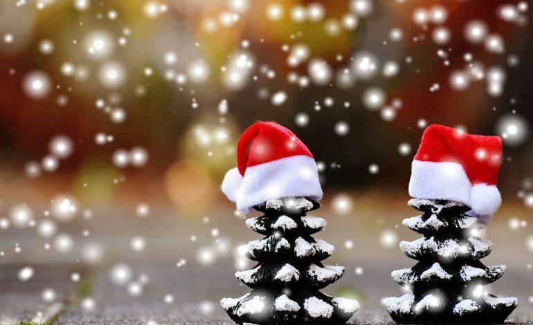 Τα ζώδια σήμερα Δευτέρα 24 Δεκεμβρίου