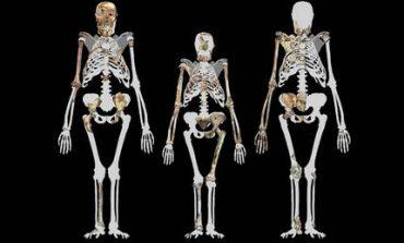 Ένα χαμένο κρίκο στην αλυσίδα της ανθρώπινης εξέλιξης μόλις ανακάλυψαν οι επιστήμονες