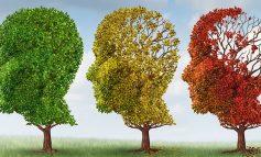 Συμβουλευτική και Ψυχική υγεία. Πρόταση 13 από το Γιάννη Καπάτσο