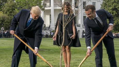Τι απαντά ο Μακρόν για τη βελανιδιά – σύμβολο της φιλίας του με τον Τραμπ που ξεράθηκε