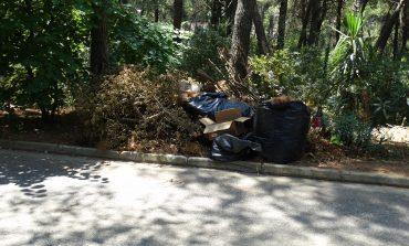 Βασικό θέμα τα κηπαία στο Δήμο Διονύσου στη συνεδρίαση της Τρίτης 2 Ιουλίου. Ημερήσια διάταξη