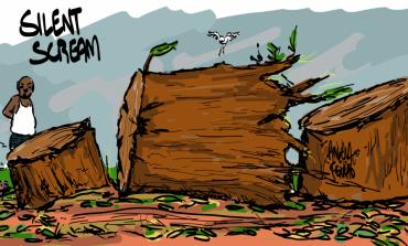 Το ιστορία ενός Δέντρου στην Κηφισιά