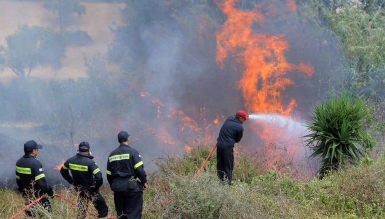 Χαλκιδική: συνελήφθη αλλοδαπός με 5 αναπτήρες σε εστίες πυρκαγιάς