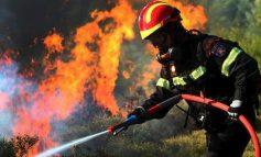 Προστατεύουμε όλοι μαζί τον Δήμο μας από το ενδεχόμενο πυρκαγιάς