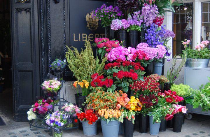 Θεσσαλονίκη: Μήνυση για το παρεμπόριο λουλουδιών στο ΑΠΘ κατέθεσαν οι ανθοπώλες