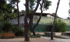 Απορρίφθηκε η αίτηση ανάκλησης του Δήμου Κηφισιάς για την ΑΛΑΣΚΑ.